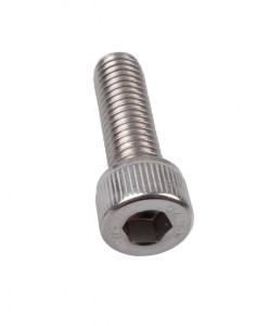 SS Socket cap screw