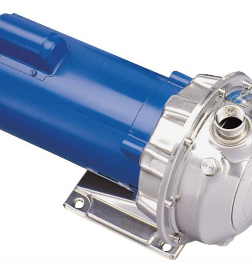 Goulds-NPE-316l-SS-Series-Pumps