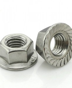 stainless-steel-flange-nut-500x500